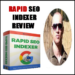 Rapid SEO Indexer Review – Indexed In Google In 30 Seconds?