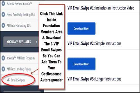 VIP Email Swipes